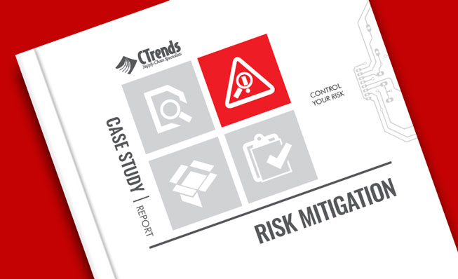 Risk Mitigation Case Study